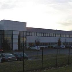 Location Bureau Saint-Quentin-Fallavier 740 m²