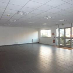 Location Local d'activités Chantepie 230 m²