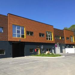Location Local d'activités Villebon-sur-Yvette (91940)