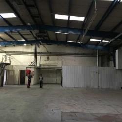 Location Local d'activités Beauchamp 530 m²