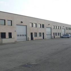 Location Local d'activités Chassieu 369 m²