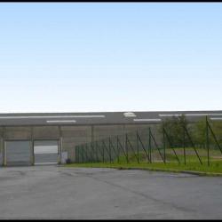Location Local d'activités / Entrepôt Lesquin
