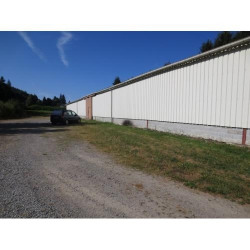 Vente Local commercial Compreignac 1000 m²