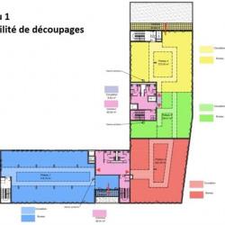 Location Bureau Lyon 9ème 5303 m²