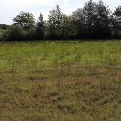 Terrain  de 2200 m²  Saint-Yaguen  (40400)