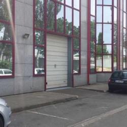 Location Local d'activités Colombes 275 m²