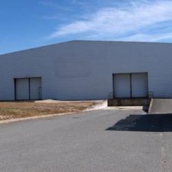 Location Entrepôt Carbon-Blanc 3888 m²