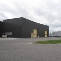 Location Local d'activités Altorf 675 m²