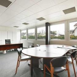 Location Local d'activités Bezons 1473 m²