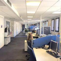 Location Bureau Lyon 3ème 459 m²