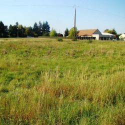 Vente Terrain Saint-Maur 9561 m²