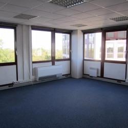 Vente Bureau Toulouse 262 m²