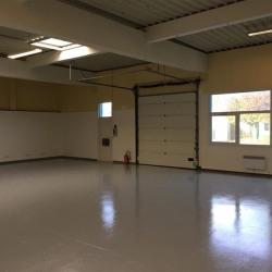 Location Local d'activités Trappes 242 m²