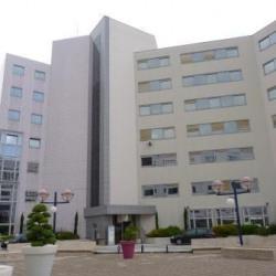 Location Bureau Lyon 7ème 216 m²