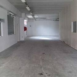 Location Local d'activités Vitry-sur-Seine 500 m²