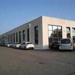 Location Local d'activités Toulouse 456 m²