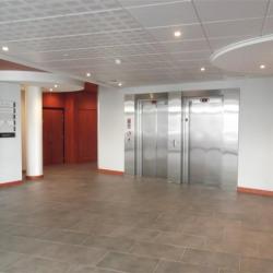 Location Bureau Lyon 9ème 266 m²