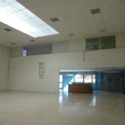 Location Local d'activités Savigny-le-Temple 360 m²
