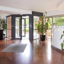 Location Bureau Meudon 25 m²