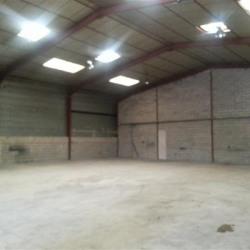 Location Local d'activités Crosne 665 m²