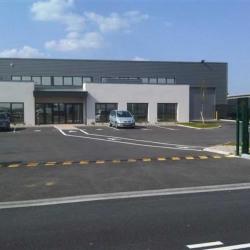 Location Local d'activités Mions 620 m²