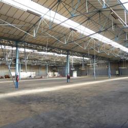 Location Entrepôt Saint-Pierre-de-Varengeville 3100 m²