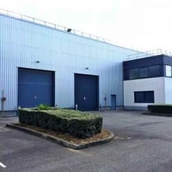 Location Local d'activités Goussainville 472 m²