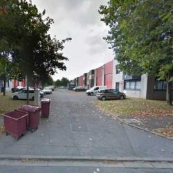 Location Local d'activités Collégien 259 m²