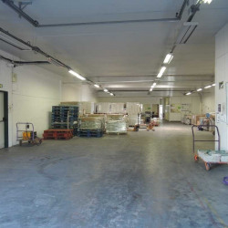 Location Local d'activités Gennevilliers 1079 m²