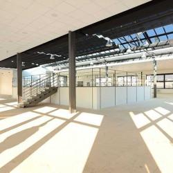 Location Bureau Joinville-le-Pont 800 m²