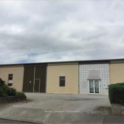 Location Local d'activités Saint-Orens-de-Gameville (31650)