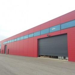 Location Local d'activités Couëron 435 m²