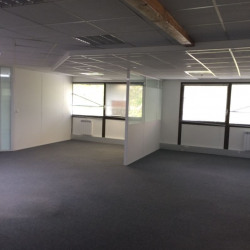 Location Bureau Balma 410 m²
