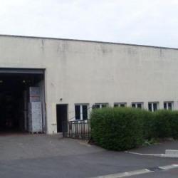Location Local d'activités Seclin 850 m²