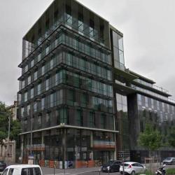 Location Bureau Lyon 7ème 784 m²
