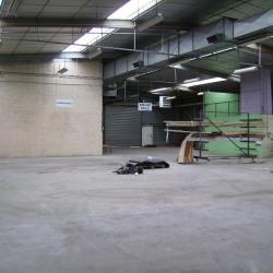 Vente Terrain Le Rheu 2650 m²