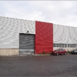 Location Local d'activités Chassieu 549 m²