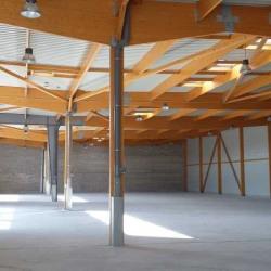 Location Local d'activités Élancourt 496,55 m²