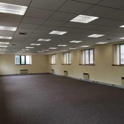 Location Bureau Le Plessis-Robinson 392 m²
