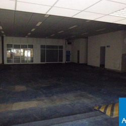Location Local commercial Bayonne 500 m²