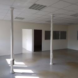 Location Local d'activités Pessac 418 m²