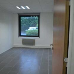 Location Bureau Lognes 54 m²