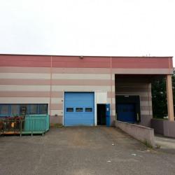 Location Local d'activités Blyes 550 m²