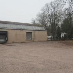 Vente Local d'activités Lutzelhouse 6809 m²