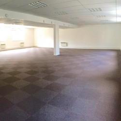 Location Bureau Versailles 120 m²