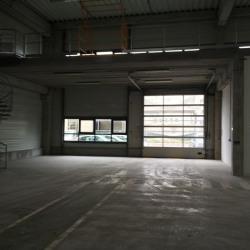 Location Local d'activités Gennevilliers 1400 m²