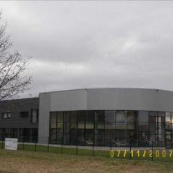 Vente Entrepôt Weyersheim 1169 m²