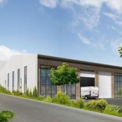 Location Local d'activités Aigremont 2859 m²