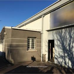 Location Local d'activités Quint-Fonsegrives 231 m²