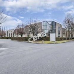 Location Local d'activités Villepinte 5405 m²